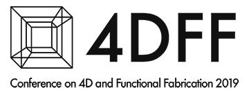4DFF2019